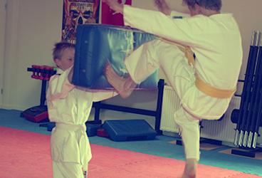 fitnesscentremetamorfose.nl - Jiu Jitsu 02