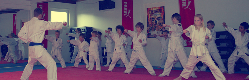 fitnesscentremetamorfose.nl - Karate 01